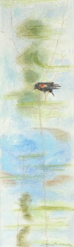 "<strong>Thirteen Ways of Looking at a Red-winged Blackbird 6</strong> – 3.5"" x 12"" – Pastel on archival paper – $275"