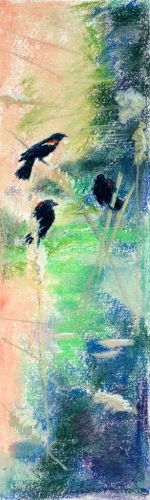 "<strong>Thirteen Ways of Looking at a Red-winged Blackbird 9</strong> – 3.5"" x 12"" – Pastel on archival paper – $275"